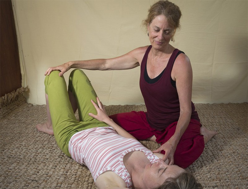 Dyana Wells, Somatics, Anatomy, Mindfulness and Philosophy teacher, Contemporary Yoga Teacher Training