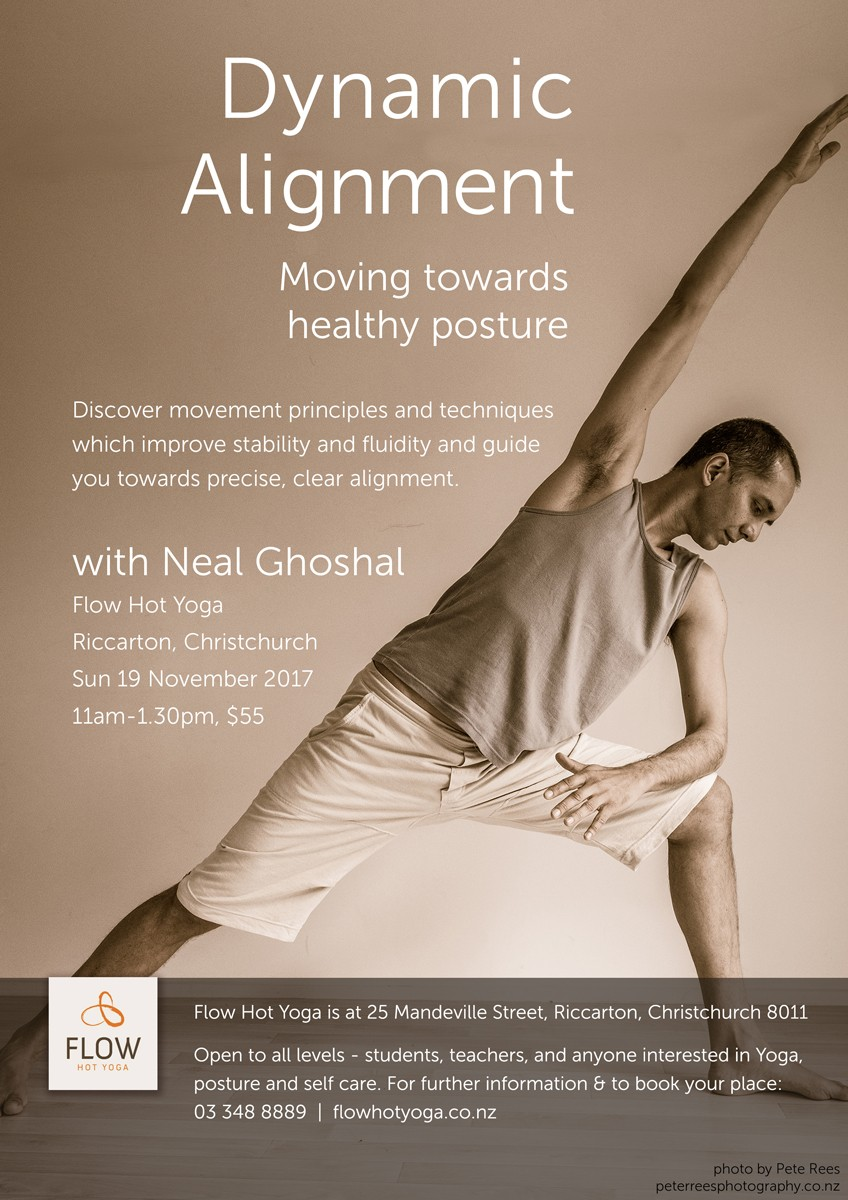 Dynamic Alignment with Neal Ghoshal, Flow Hot Yoga, Nov 2017
