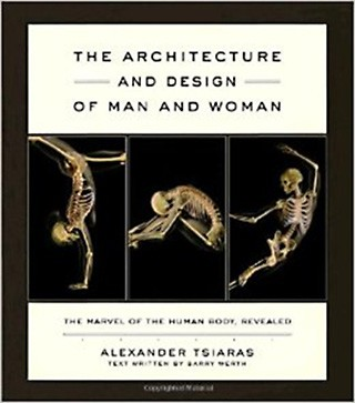 The Architecture and Design of Man and Woman