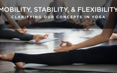 Mobility, Stability and Flexibility: Clarifying Our Concepts in Yoga