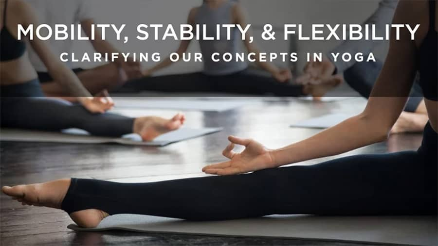 Mobility, Stability and Flexibility