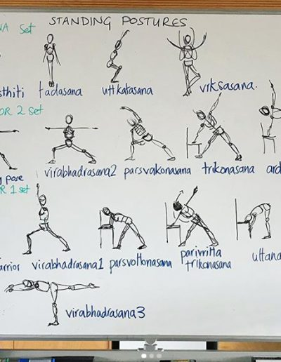 Contemporary Yoga Teacher Training, Standing Postures