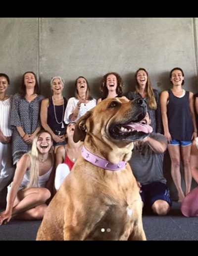 Contemporary Yoga Teacher Training, training group with local friendly dog
