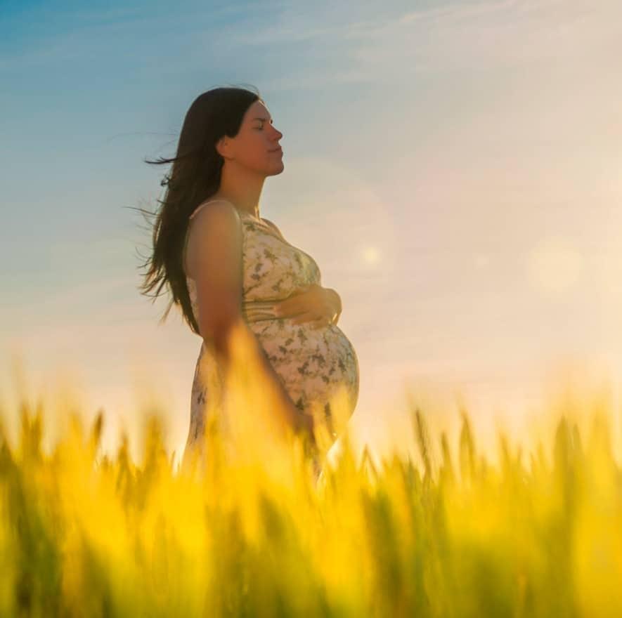 Pregnancy Yoga Teacher Training, Contemporary Yoga Teacher Training, Auckland